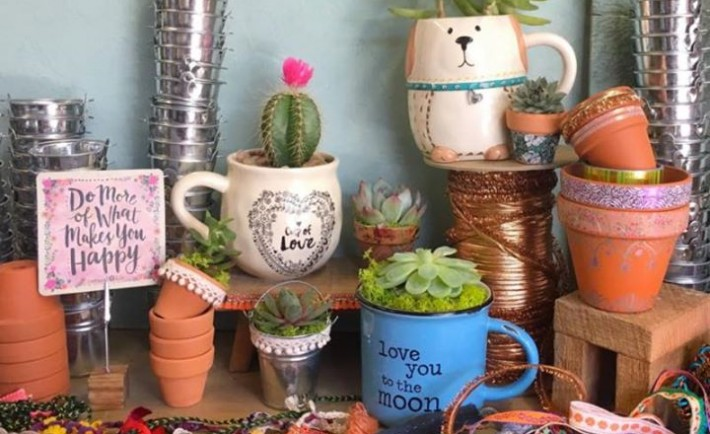 Succulent Earth Day Party