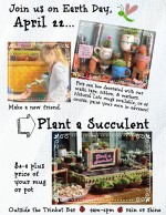 Plant a Succulent on Earth Day